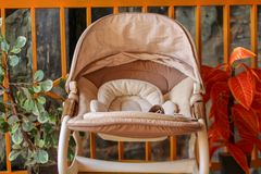 Baby carriage with a flower background in the garden stock photography