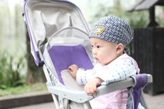Baby in carriage Stock Photography