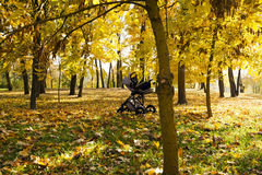 Baby carriage in the park Royalty Free Stock Images