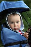 Baby in carrier Royalty Free Stock Photography