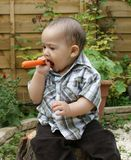 Baby and carrot 2 Stock Photos