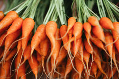 Baby carrot Stock Images
