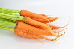 Baby Carrot Stock Photo