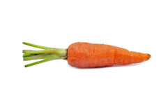 Baby carrot Royalty Free Stock Image