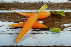 Baby carrot Stock Image
