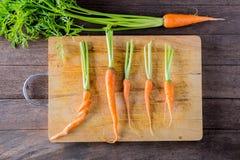 Baby carrot Stock Photos