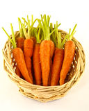 Baby carrots in basket Stock Images