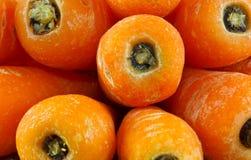 Baby carrots closeup Stock Image