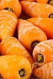 Baby carrots Royalty Free Stock Photos