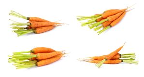 Baby carrots royalty free stock photography