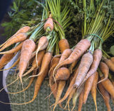 Baby Carrots at Farmers Market Royalty Free Stock Photos