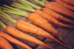 Baby carrots, fresh vegetables grown with pesticides and non-tox. Ic. And delicious Stock Images