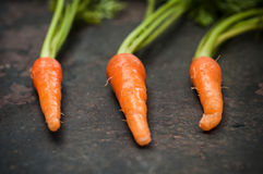 Baby carrots on grunge background Royalty Free Stock Images