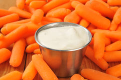 Carrot Sticks Royalty Free Stock Image