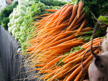 Baby Carrots. For sale at the Local Fruit and Vegetable Markets Stock Images