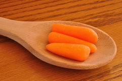 Baby Carrots on a Wooden Spoon Stock Image