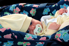 Baby in carseat Stock Images