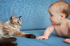 Baby and cat. Baby and the cat lay on the couch and stare at each other Royalty Free Stock Image