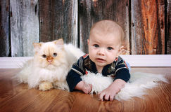 Baby and Cat. Baby boy and white himalayan cat on wood floor background royalty free stock image
