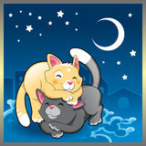 Baby cat in the night. Vector illustration Royalty Free Stock Photos