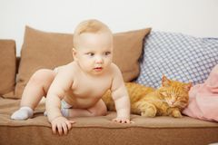 Baby and cat sits on sofa, infant allergy on feline royalty free stock photography