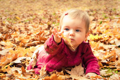 Baby catching a yellow leaf Stock Image