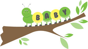 Baby Caterpillar Royalty Free Stock Photo