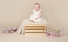 Baby Cherry Blossom Stock Foto