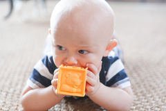 Baby Chewing on Toy Block. A bald healthy baby with big blue eyes teething on a yellow plastic block with lions while crawling on a rug made of natural fibers Royalty Free Stock Photo