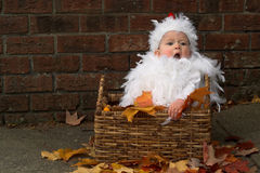 Baby Chick. Image of a cute baby wearing a chicken costume, sitting in a basket Royalty Free Stock Photos
