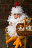 Baby Chick. Image of a cute baby wearing a chicken costume, holding a basket of eggs Stock Image
