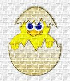 Baby chick in eggshell - graffiti on the wall Stock Photos