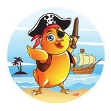 Baby Chick Pirate Royalty Free Stock Photography