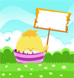 Baby Chick's Easter Message Royalty Free Stock Photo
