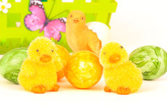 Baby chicken and egg Royalty Free Stock Image