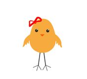 Baby chicken Stock Images