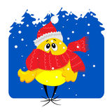 Baby chicken on snowy background illustration Stock Images