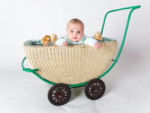 A baby with chicks in a pram Stock Image