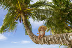 Baby child on palm tree on tropical sea background Royalty Free Stock Image