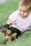 Baby child and yorkshire terrier Stock Photo