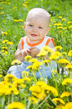 Baby children on the grass Royalty Free Stock Photos