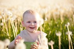 Baby children in meadow Stock Images