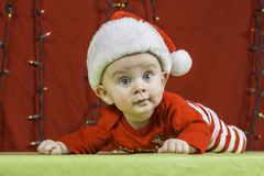 Baby Christmas Portrait Stock Photos