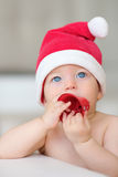 Baby christmas portrait in Santa Claus hat Royalty Free Stock Photo