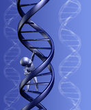 Baby Climbing Strand of DNA Royalty Free Stock Photos