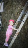 Baby climbing up the ladder. Country life is full of action, you can climb on a haystack in seconds Royalty Free Stock Photos