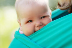 Baby closed to mom in sling Royalty Free Stock Photography