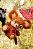 Baby clothes, soft toys. Drying after washing royalty free stock photo