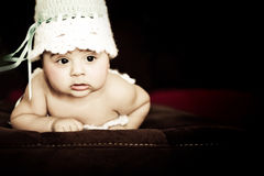 Baby in cocon Stock Foto