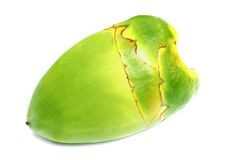 Baby Coconut. Green coconut over white background Stock Photo